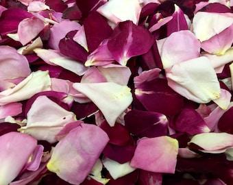 Timeless Rose Petals. Wedding Petals. 50 cups. Rose Petals. Flower Girl Petals. Freeze Dried Rose Petals. Flower Confetti. Wedding Aisle.USA