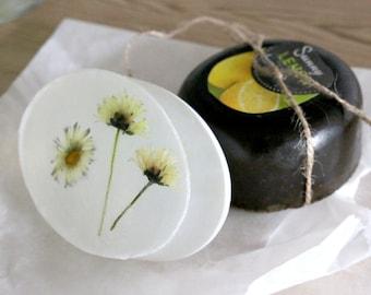 Tea-soap and daisy soap