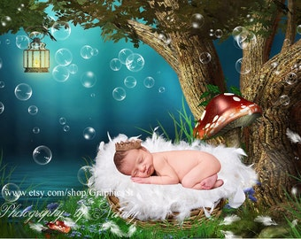 Newborn photography digital backdrop | Photo props photography backdrop | Newborn background | Dreamcatcher | baby photography