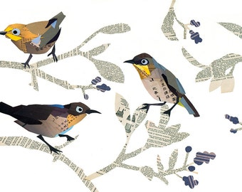 Limited Edition print from an original collage of Cape White-eye birds