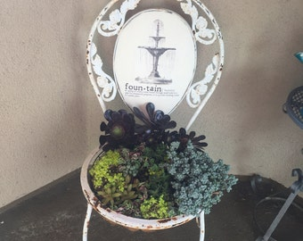 Succulent Chair