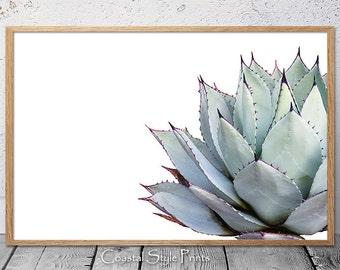 Landscape orientation, Cactus Print, Succulent, Cactus, Gray, Aqua, Succulent Print, Botanical Print, Wall Art, Poster, Cactus Poster, #108