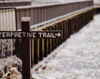 Interpretive Trail Digital Print