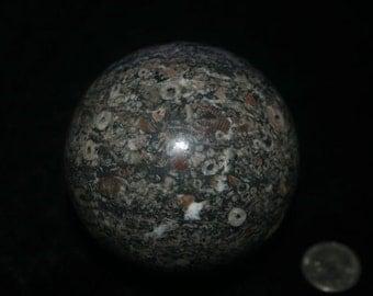 Crinoid Marble Sphere