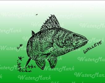 Walleye fish decal bumper sticker shirt design