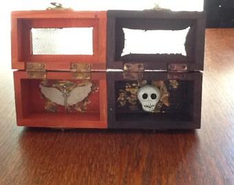 Wing & Skull Altar Box