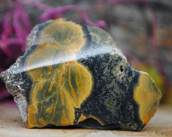 Orbicular Ocean Jasper Crystal Specimen - 1137.08