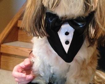 Tuxedo Dog Bandana