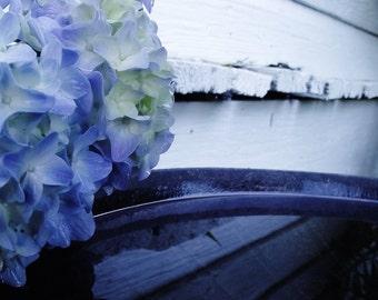 Blue Hydrangea Pool
