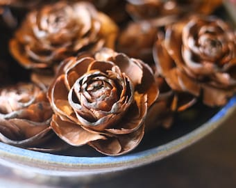 Set-of-10 Rose Pinecones