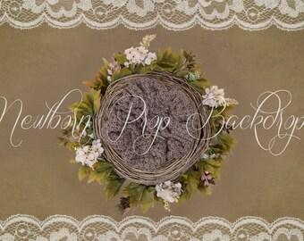 Newborn Digital Backdrop (flower/nest/white/green)