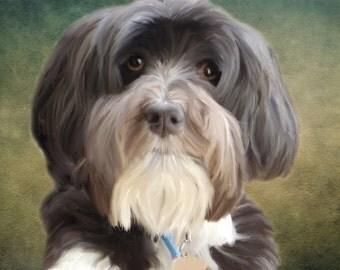 Dog Portraits From Photos - Custom Pet Portraits from Photo - You get a Digital File: PDF JPG - You Print - Custom Pet illustration