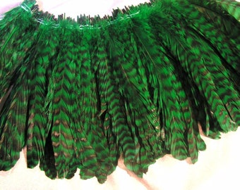 Green chinchilla rooster feathers, DIY, costume supply