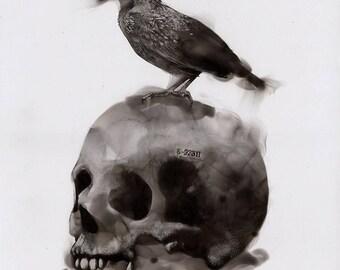 Fire Skull Art Print Etsy