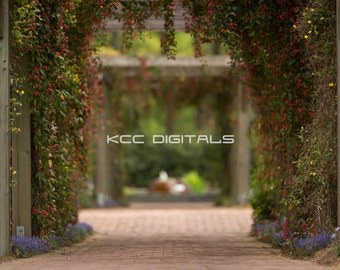 KCC Summer Digital Background/Backdrop - Instant Download
