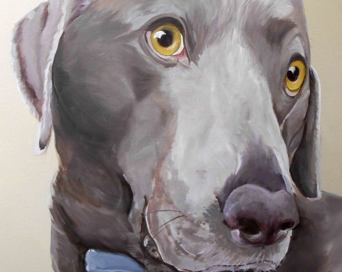 """Pet Portrait Oil Painting, 18"""" x 24"""" Weimaraner Mix or any breed"""