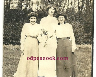 The tall one - friends girls vintage photo awkward Edwardian women flowers