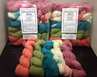 Frabjous Fibers 430 yards 5 Mini Skein Pack, Sport Weight; melon, lime, turquoise, speckle & rose.