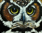 Owl painting 117 12x12 inch original oil painting by Roz