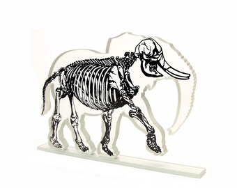 Xray Elephant Glass Sculpture Skeleton Custom Screen Print Colours