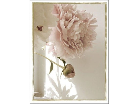Pink Peony Card,  Photo Card, Blank Card, Mother's Day Card, Greeting Card