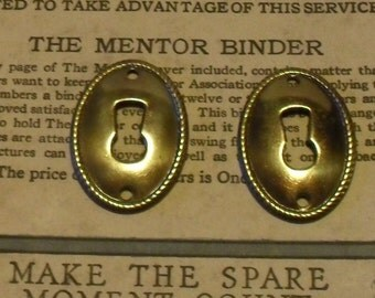 2 Brassy Skeleton Keyhole Covers