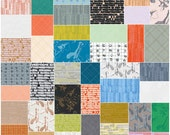 "SQ117 Robert Kaufman CARKAI Precut 5"" Charm Pack Fabric Quilting Cotton Squares Carolyn Friedlander CHS-463-42"