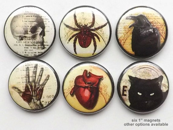 fridge Magnets refrigerator Macabre Goth Horror skull anatomical heart black cat bat halloween party favor stocking stuffer button pins gift