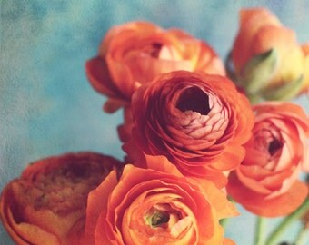 "Floral wall art / orange aqua teal / nursery art / ranunculus print / baby room decor / colorful photography print / 12x12 ""Precious Gift"""