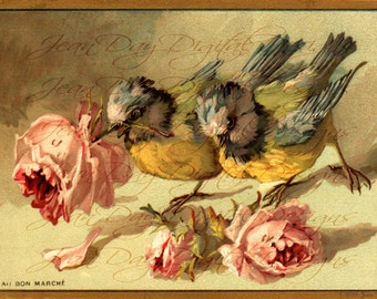 Birds Digital, French Birds Bon Marche ad Summer Roses - French Ad, larger image -  Instant Download, FrA179