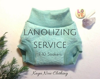 Lanolizing Service Monthly Subscription The Full Timer / I Lanolize Your Woolies