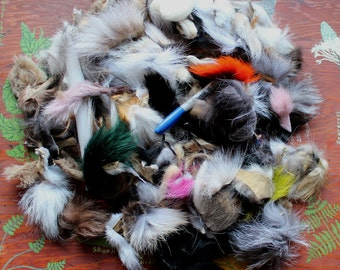 Large priority box full of real fox, coyote, raccoon and other fur scraps for small craft, fly tying and display DESTASH
