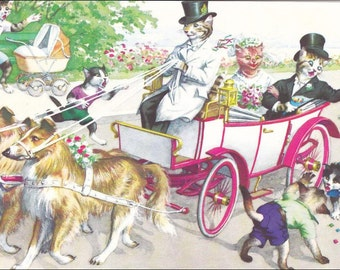 Mainzer Cats Wedding Postcard, 4920, Dressed cats in open carriage vintage postcard, SharonFosterVintage