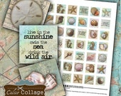 Sea Shells Digital Collage Sheet 1x1 Inch Inchies Vintage Beach Pendant Images for Bezel Settings Calico Collage Decoupage Paper