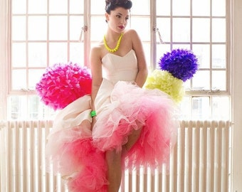 Miss Anya's Level 2 Ombre tulle petticoat ~ Gradient Color Tutu ~ Parties Weddings & Engagements