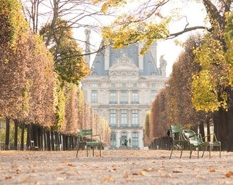 Paris Photography, Autumn Light in the Tulleries, Paris France, Paris Gardens, Paris decor, Nature, Golden Hues, Parisian, French Decor