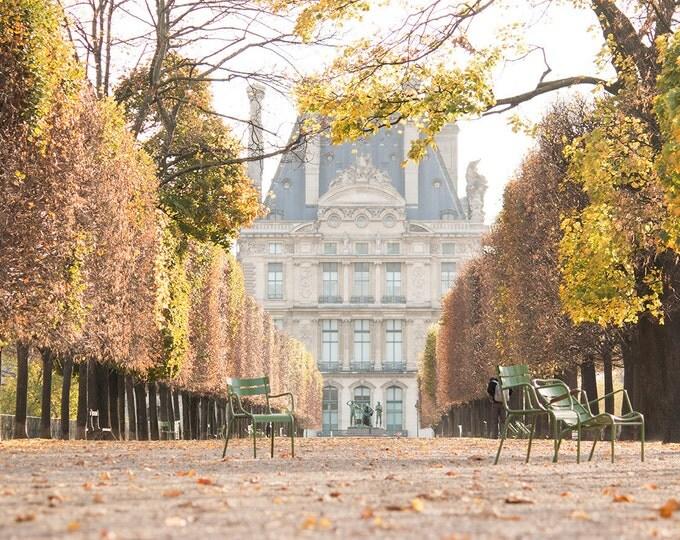 Paris Photography, Autumn Light in the Tulleries, Paris France, Paris Gardens, Paris decor, Nature, Golden Hues, Parisian, French Decor