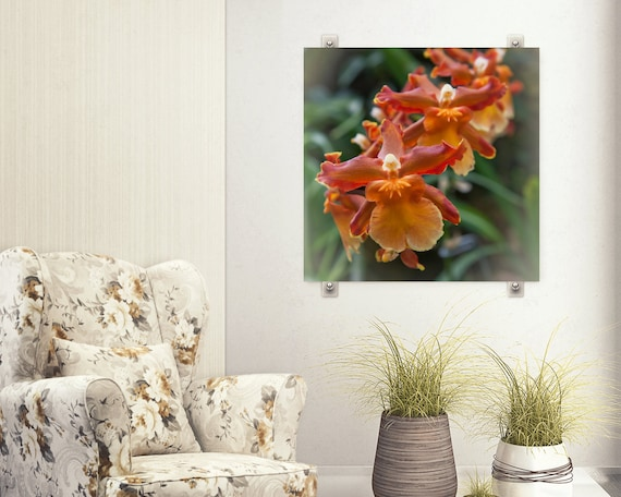 Burnt Orange Orchid Flower Photograph, Flower Art,  Dining Room Wall Art, Green and Rust Home Decor, Botanical Flower Picture, Square Print
