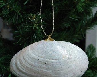 Medium Glittery Shell Christmas Tree Ornament