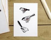 Birds illustrated graphic art print monochrome copper details songbirds nature