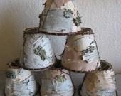 set of 6 chandelier birch bark lampshades