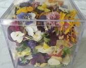 Flower Petal Confetti, Dried Flowers, Wedding Decorations, Flower Petals, Pot Pourri, Decor, Centerpiece, Reception, Flower Girl, 3 US cups