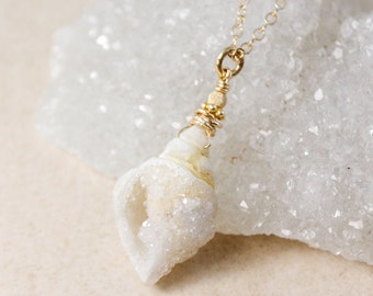 50% OFF SALE Small Druzy Seashell Necklace - Choose Your Seashell - 14Kt Gold Filled