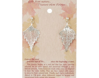 Real Birch Leaf Dipped In Silver Post Dangle Earrings - Real Dipped Leaves - On Card