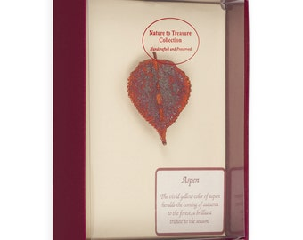 Real Aspen Leaf Dipped In Iridescent Copper Barpin Brooches - Real Dipped Leaves