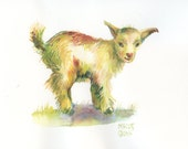 Day 24 - Signed Print - Daily Watercolor - Pygmy Goat -  One of 366 days of watercolor paintings and/or ink drawings