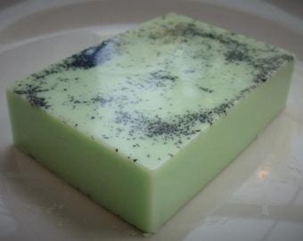 Hawaiian Coconut Salt Bar Soap - 5 ounces