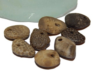 Hand drilled beach stone fossils, Lake Michigan beads, up north, natural earthy unpolished jewelry suppolies, drilled beach stones