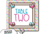 Table Number Cards, Food Labeling Cards, Table Signage, Baby Gender Reveal Party, Baby Shower, Pink & Blue Baby Owls
