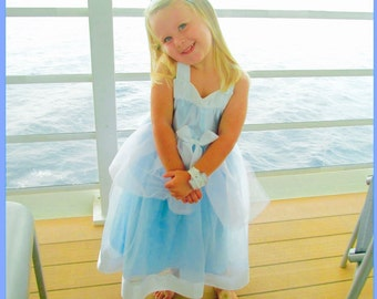 Princess Cinderella Dress: Tutu Dress, blue & white, Birthday Party, princess dinner, Wrap Around Easy on off, adjustable, halloween costume